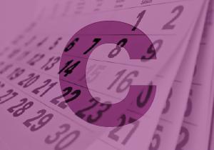 Calendaris sobretaula, paret, magnètics, calendaris wire-o, calendaris regles, personalitzats 100%