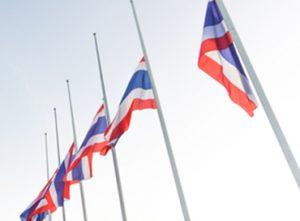 10D Bandera màstil standad