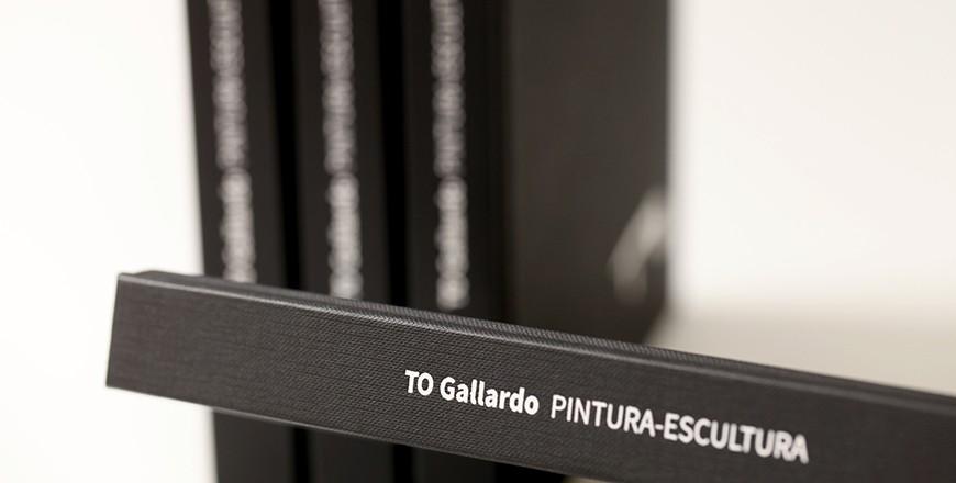 llibre to gallardo PORTADA