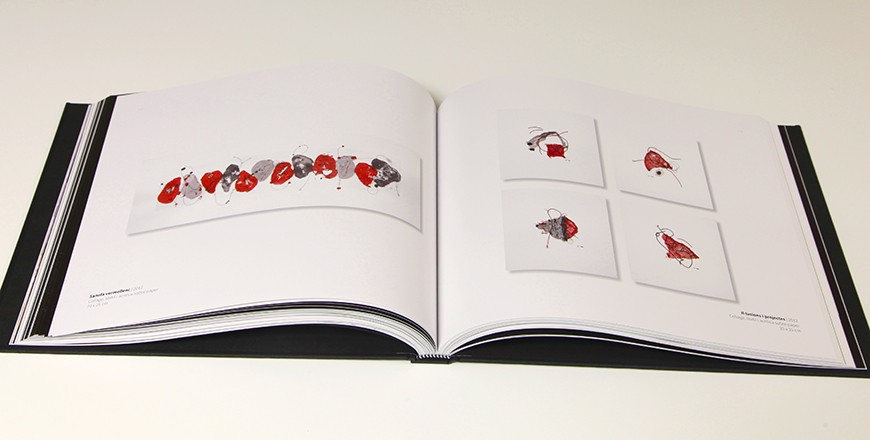 llibre to gallardo 6